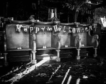 Sita O'Driscoll, Event Photographer, Galway, Ireland, Castle Ellen, Halloween