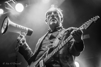 Elvis Costello 2016, Sita O'Driscoll, Galway, Big Top, GIAF, Galway International Arts Festival