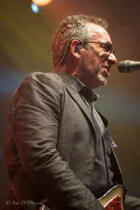 Elvis Costello, Press Photographer, Stage Photography- Clare, Cork, Dublin, Galway, Kerry, Kildare, Kilkenny, Laois, Leitrim, Limerick, Longford, Louth, Mayo, Meath, Offaly, Roscommon, Ireland, Photographer, Press Photographer- Clare, Cork, Dublin, Galway, Kerry, España, Nederland Pers Sita O'Driscoll, Photographer Galway, Photographer Spain, Photographer Europe, Artistic Photographer, Event Photographer, Portrait Photographer, Lifestyle Photographer, Stage Photographer, Wedding Photographer, Commercial Photographer, Food Photographer, Press Photographer, PR Photographer, International Photographer, Travel Photographer, Destination Wedding Photographer, Barcelona, Nerja, Granada, Costa Blanca, Italy, Greece, Croatia, France, UK, Morocco, Turkey, Nederland, Ierland, Sita O'Driscoll Photography (Art - Events - Portraits / Lifestyle - Weddings - Commercial - Food - Press - PR) Ireland, Antrim, Armagh, Carlow, Cavan, Clare, Cork, Derry, Donegal, Down, Dublin, Fermanagh, Galway, Kerry, Kildare, Kilkenny, Laois, Leitrim, Limerick, Longford, Louth, Mayo, Meath, Monaghan, Offaly, Roscommon, Sligo, Tipperary, Tyrone, Waterford, Westmeath, Wexford, Wicklow Austria, Belgium, Czech Republic, Denmark, Estonia, Finland, France, Germany, Greece, Hungary, Iceland, Italy, Latvia, Liechtenstein, Lithuania, Luxembourg, Malta, Netherlands, Norway, Poland, Portugal, Slovakia, Slovenia, Spain, Sweden, Switzerland, United Kingdom
